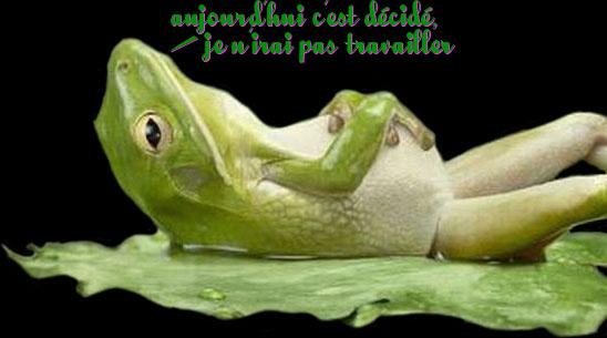 Bon Vendredi Animals_53_03